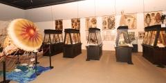 12_Ausstellungsansicht mit Holzvitrinen aus dem Österreich Pavillon aus der Weltausstellung 1878