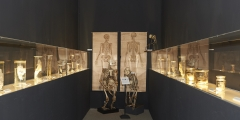 2_Ausstellungsansicht mit Objekten aus der Zoologischen Sammlung der Universität Wien