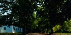 Blick in den Park Schloss Halbturn